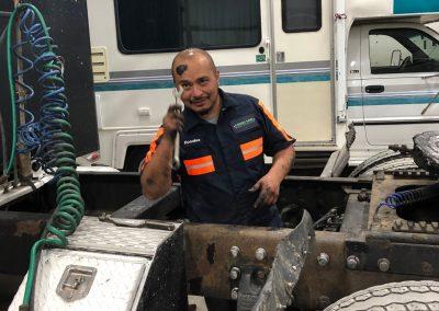 Diesel Repair Facilities