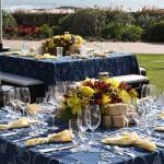 Criswell-Merrilees-Wedding-IMG_8255