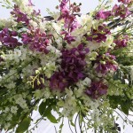 Criswell-Merrilees-Wedding-IMG_8373
