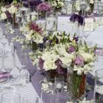 Criswell-Merrilees-Wedding-IMG_8510