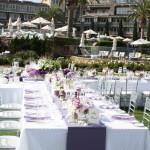 Criswell-Merrilees-Wedding-IMG_8522