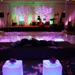 Criswell-Merrilees-Wedding-IMG_8697