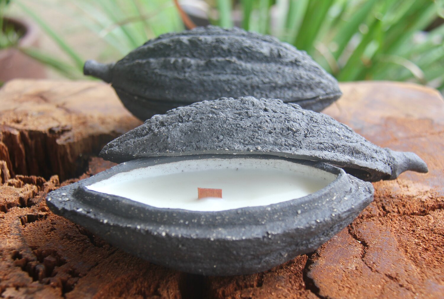 Cacao Cabosse Candle