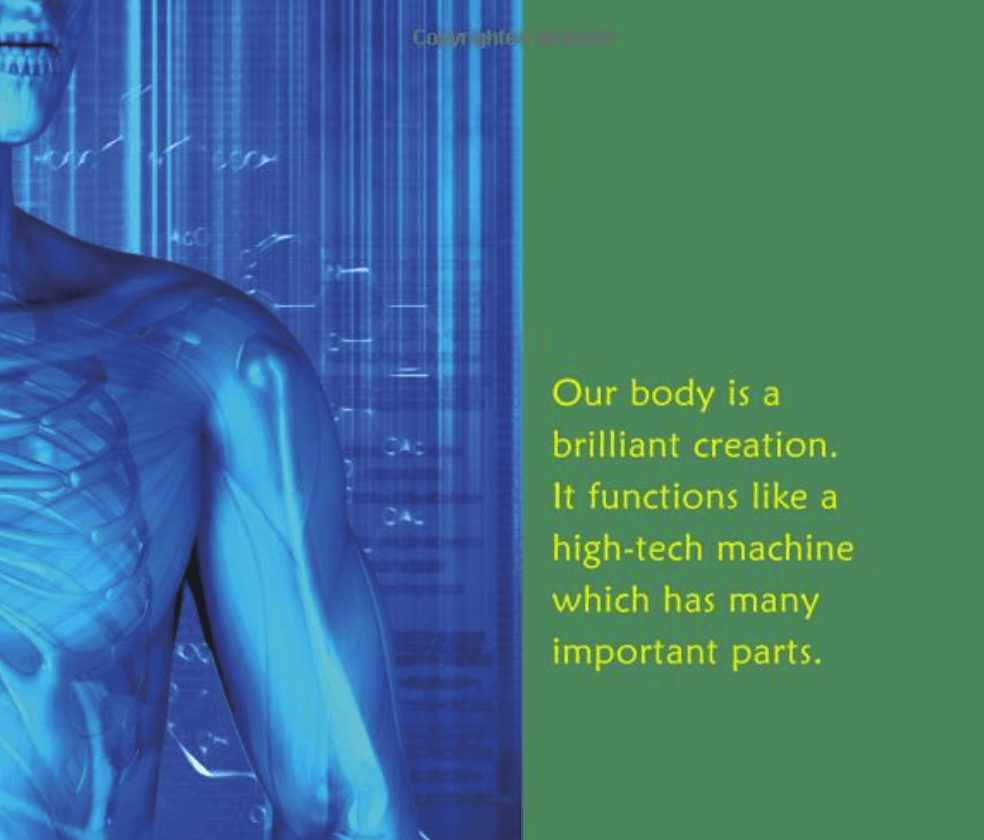 How Your Body Works! | Anatomy and Physiology