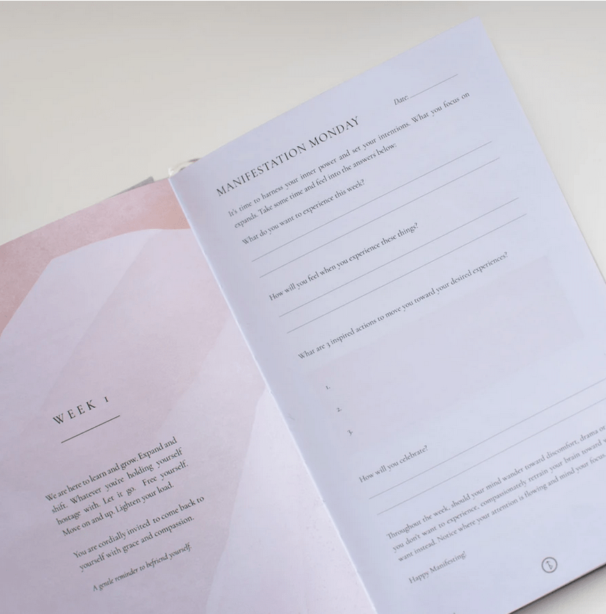 The Daily Joy Journal