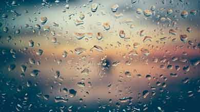 7-Day Rain Guarantee Window Cleaning