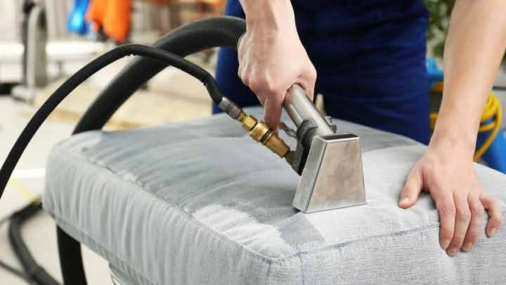 Upholstery Cleaning Pet Stain Removal