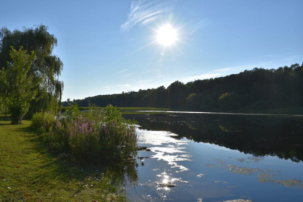 Beaverpond scenic