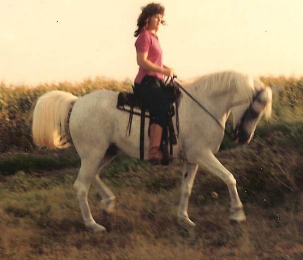 Austin tx equestrian realtor betty saenz