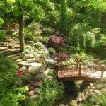 A footbridge through the shaded dog-friendly landscape of Zilker Botanical Gardens