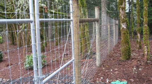 Wildlife Fence