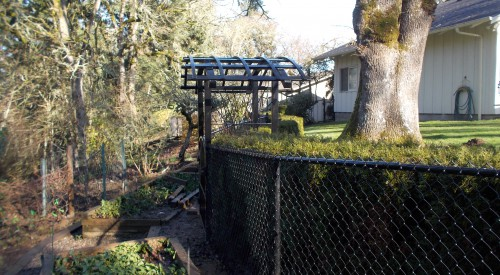 Custom Arbor and Fence