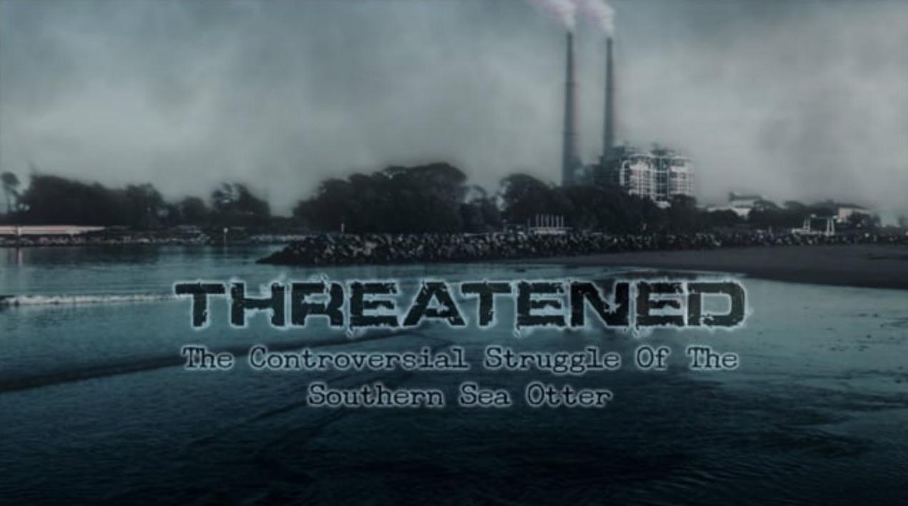 Sea Otter TV Documentary