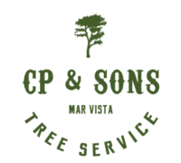 cp and sons tree services logo