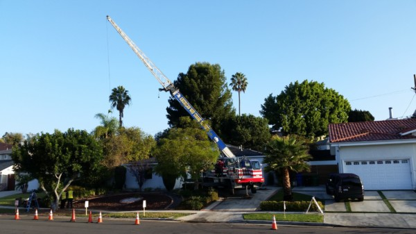 crane assisted removal los angeles