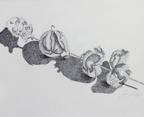 Stipple ink drawing, tomatillos