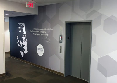 Wall wrap, wall mural, corporate mural, environmental graphics