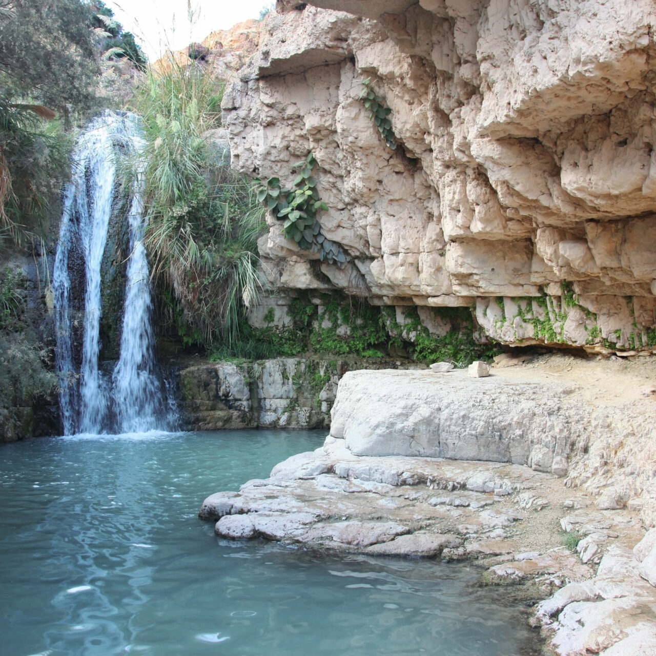 Waterfall in national park Ein Gedi near the Dead Sea in Israel