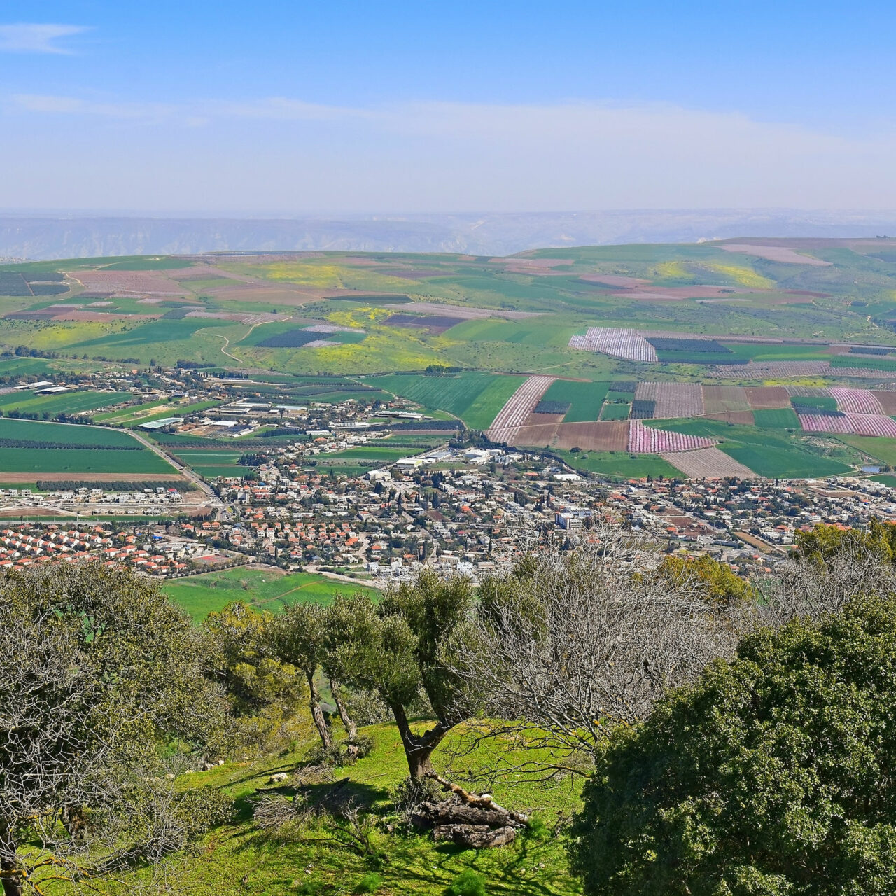 Jezreel Valley, Lower Galilee, Israel