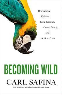 becoming_wild_safina