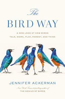 bird_way_ackerman