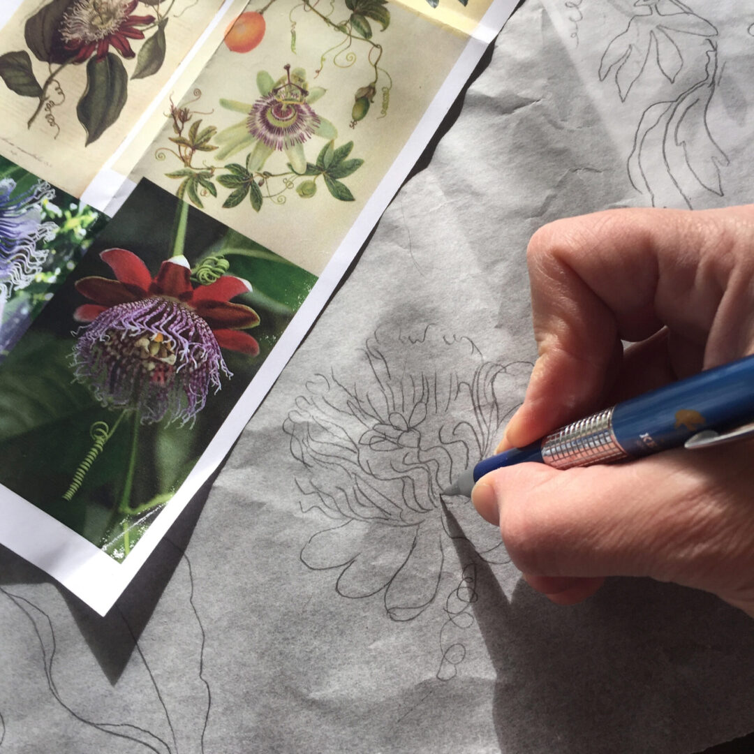 drawing-passionflower-vines