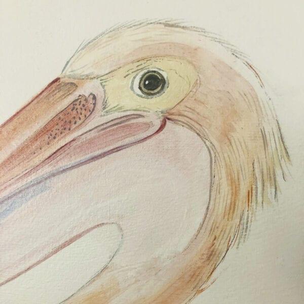pelican-painting-pelican-art-by-allison-cosmos