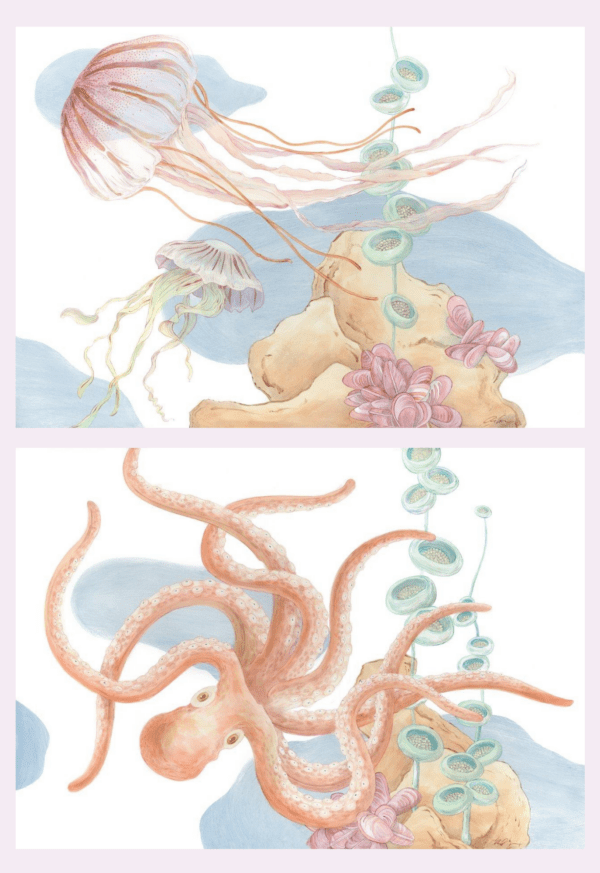 Jellyfish-and-Octopus-Paintings-Coastal-Art-by-Allison-Cosmos