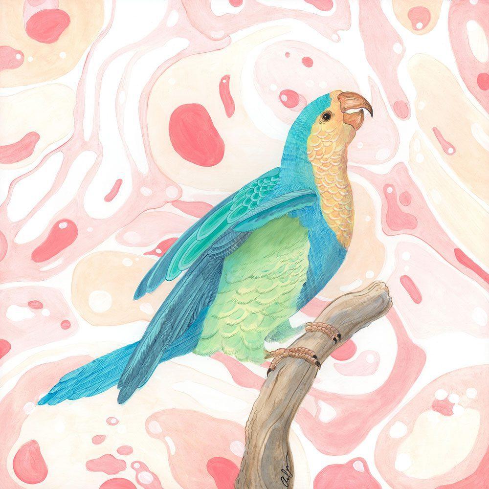 Feather-Let-me-Go-parrot-art-painting-Allison-Cosmos
