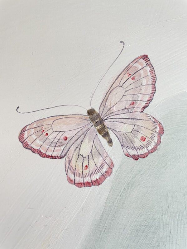 chinoiserie-butterfly-by-allison-cosmos