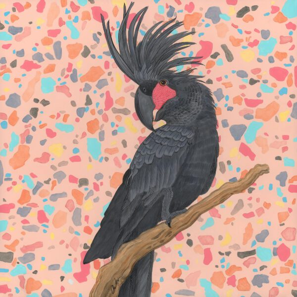 palm-cockatoo-black-parrot-painting-Allison-Cosmos