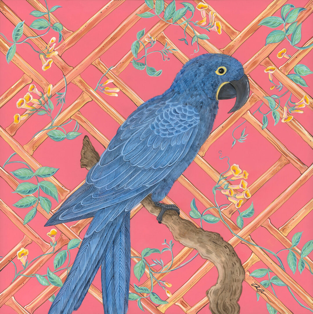 vine-and-dandy-hyacinth-macaw-blue-parrot-by-allison-cosmos