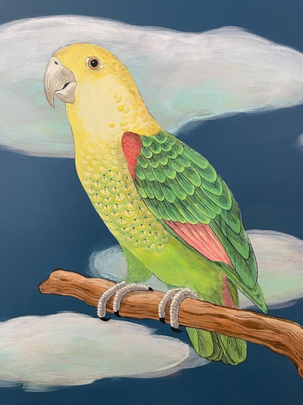 the-feather-forecast-parrot-painting-bird-by-allison-cosmos