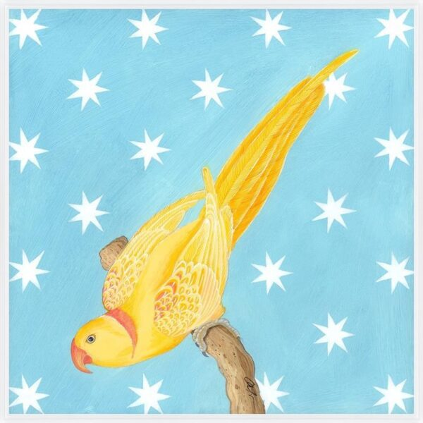 in-perch-of-excellence-yellow-parakeet-by-Allison-Cosmos