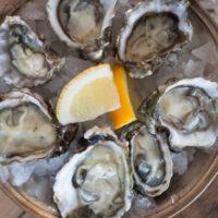 Vital Choice Oysters