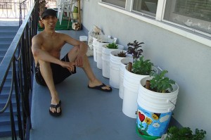 Why grow your own food and vegetables?