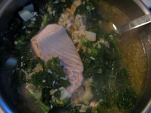Big stockpot of anti-radiation soup