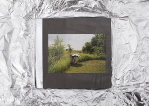 Canaries cover with foil wrapping