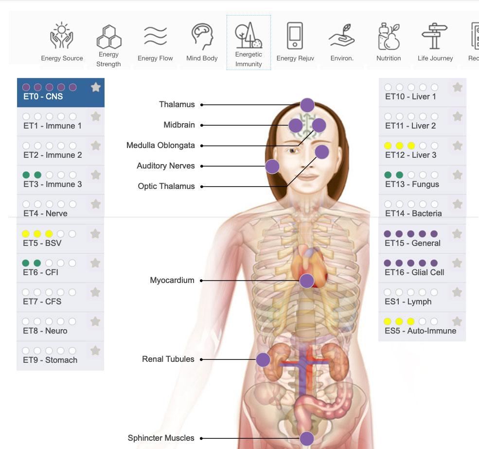 Energetic Immunity Screen