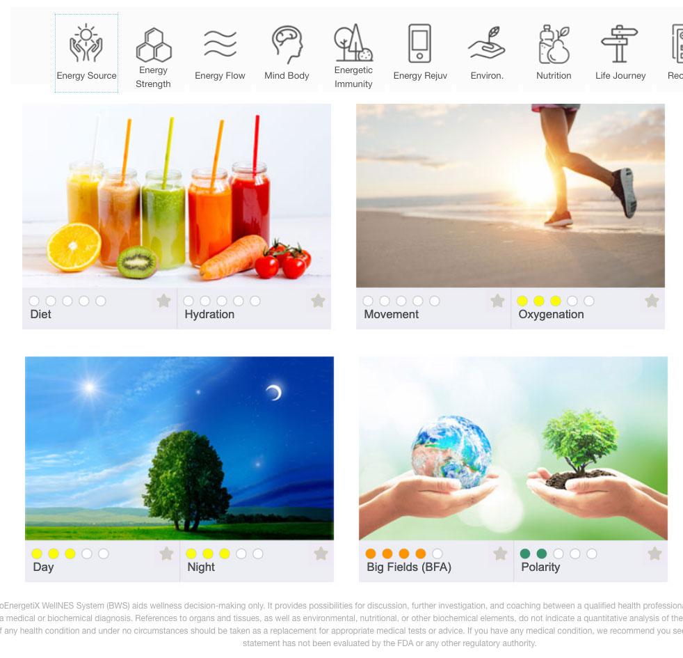 Energy Source Screen