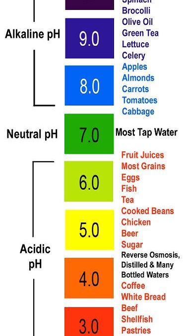 The alkaline brain: Dietary concerns in lyme-borreliosis