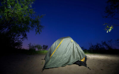EI Homelessness Part 1: Shelter and Security