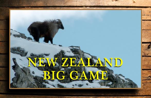 NEW ZEALAND BIG GAME