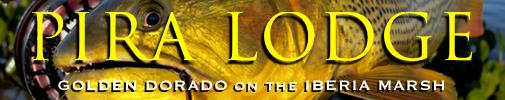 pira lodge, golden dorado, dorado fishing