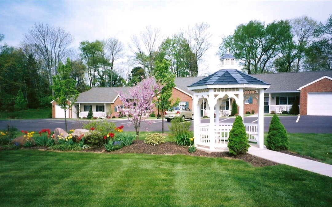 Exploring Your Options for Retirement Living