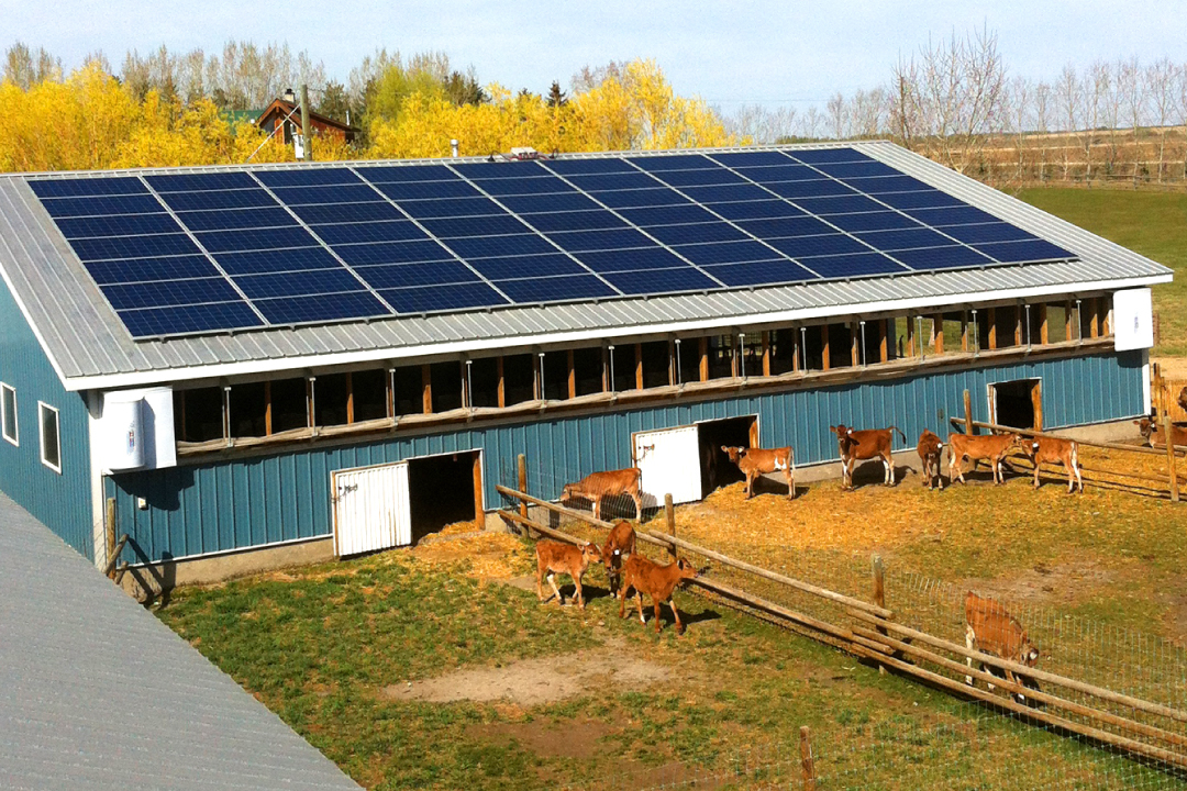 We are dedicated to provide complete solar solutions for rural electrification, C&I, farming, private, government and nonprofit.