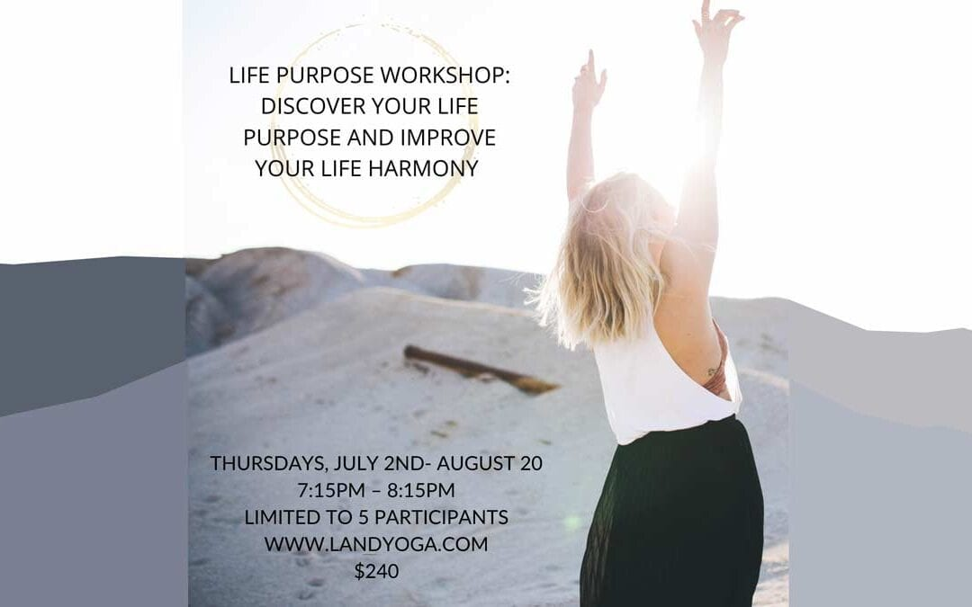 LIFE PURPOSE WORKSHOP: DISCOVER YOUR LIFE PURPOSE AND IMPROVE YOUR LIFE HARMONY IN 8 WEEKS