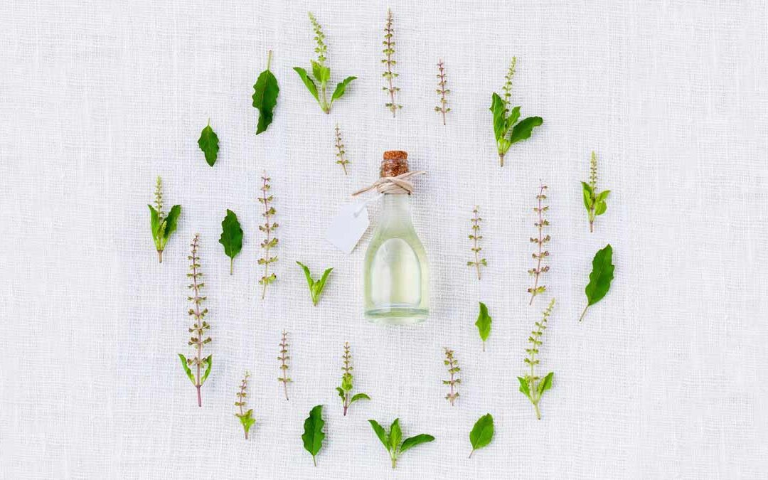 SPRING CLEANSE YOGA + MEDITATION RETREAT
