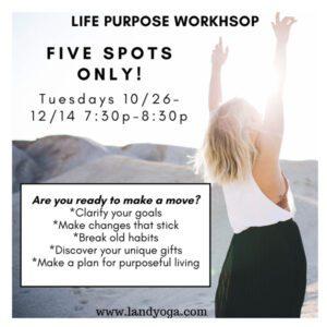 LandYoga - Life Purpose Workshop - popup