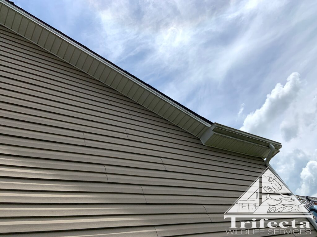 Fully repaired soffit, no more birds, like it never happened!